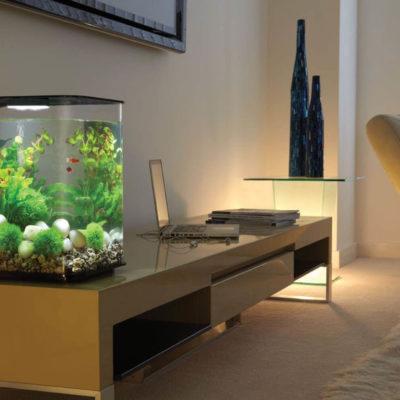 Аквариум в интерьере квартиры или дома - фото 10
