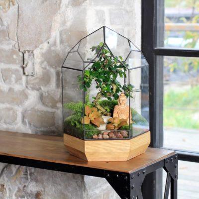 Флорариум или цветы в террариуме для вашего дома - фото 9