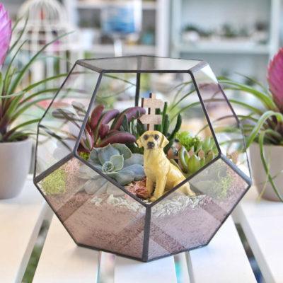 Флорариум или цветы в террариуме для вашего дома - фото 13