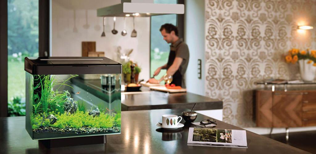 aqvarium in disaign interior - Аквариум в интерьере квартиры или дома
