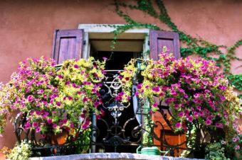 Цветы на балконе: идеи и секреты красочных галерей