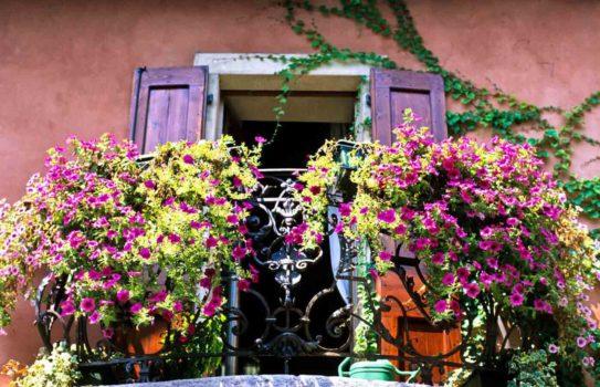 balcony flowers 01 543x350 - Цветы на балконе: идеи и секреты красочных галерей