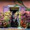 balcony flowers 01 60x60 - Цветы на балконе: идеи и секреты красочных галерей