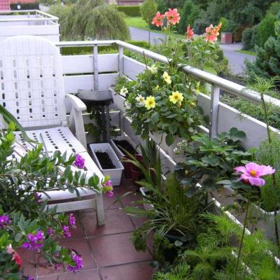 Балкон в цветах