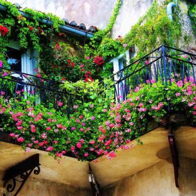 Зеленый ковер на балконе