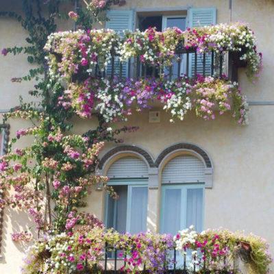 Легкое оформление балкона цветами
