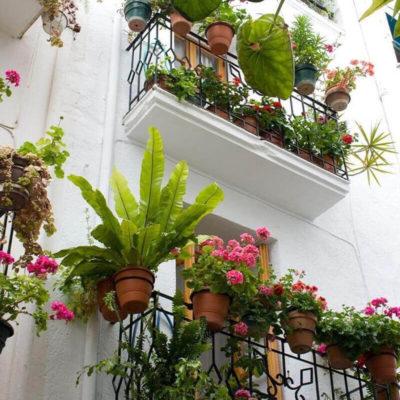 Уютный балкон в цветочках