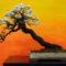 bonsai tree img01 60x60 - Бонсай в интерьере: селим и ухаживаем за японским чудом