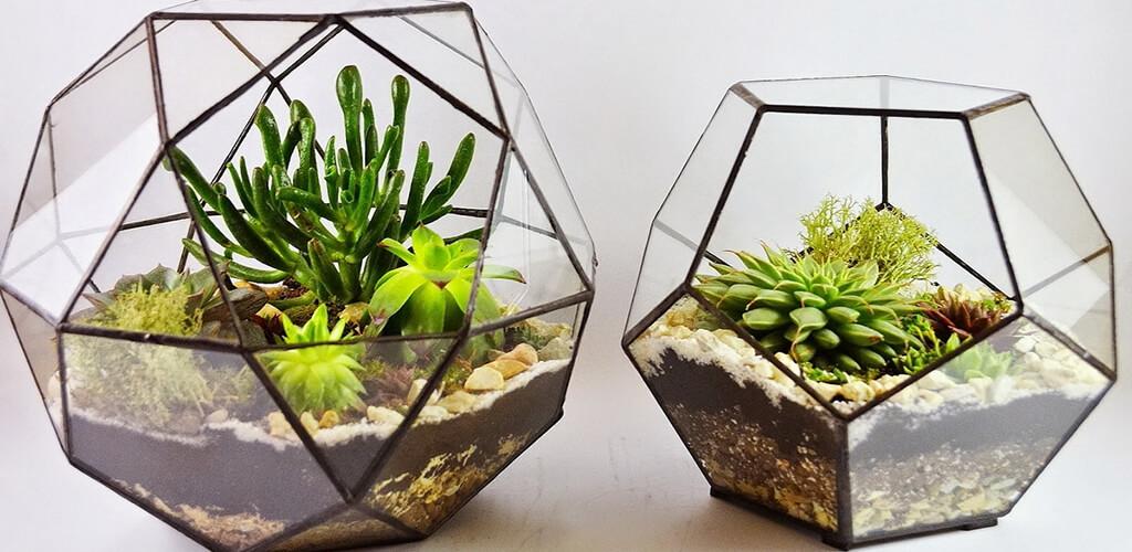 florariums - Флорариум или цветы в террариуме для вашего дома