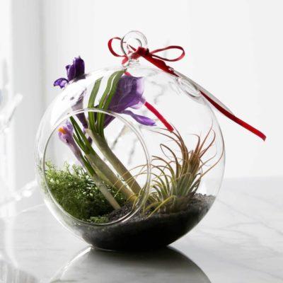 Флорариум или цветы в террариуме для вашего дома - фото 14