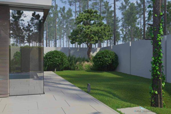 """3D визуализация ландшафта """"Минимализм в лесной зоне Плюты"""" by ElenaZhukova landscape studio - фото 2"""